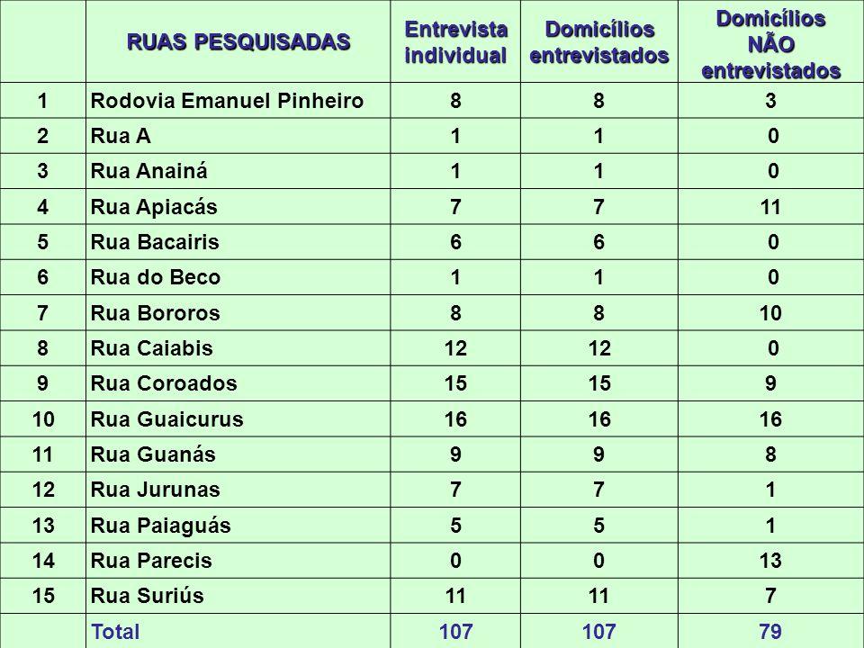 RUAS PESQUISADAS Entrevista individual Domicílios entrevistados Domicílios NÃO entrevistados 1Rodovia Emanuel Pinheiro883 2Rua A11 0 3Rua Anainá11 0 4