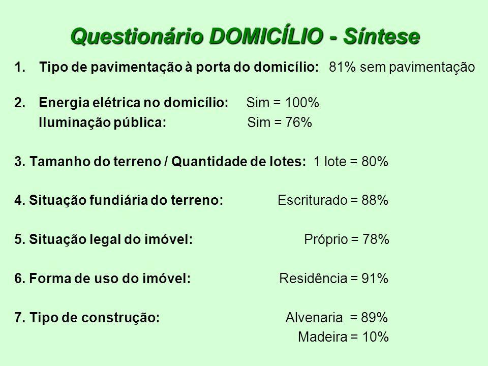 Questionário DOMICÍLIO - Síntese 1.Tipo de pavimentação à porta do domicílio: 81% sem pavimentação 2.Energia elétrica no domicílio: Sim = 100% Ilumina