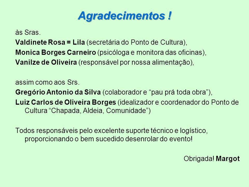Agradecimentos ! às Sras. Valdinete Rosa = Lila (secretária do Ponto de Cultura), Monica Borges Carneiro (psicóloga e monitora das oficinas), Vanilze