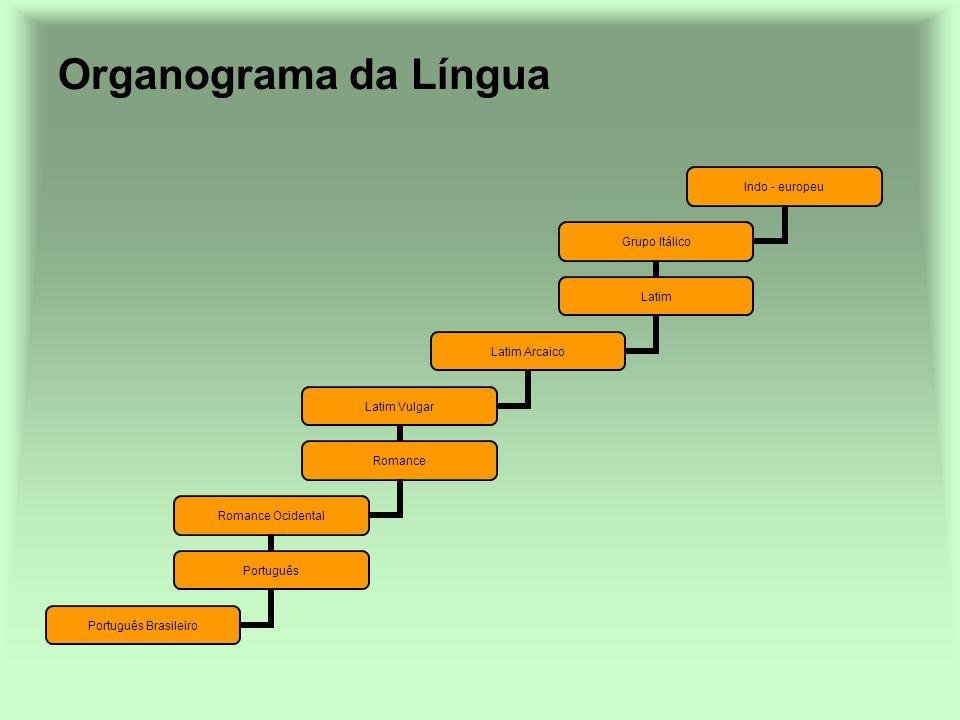 Organograma da Língua Indo - europeu Grupo Itálico Latim Latim Arcaico Latim Vulgar Romance Romance Ocidental Português Português Brasileiro