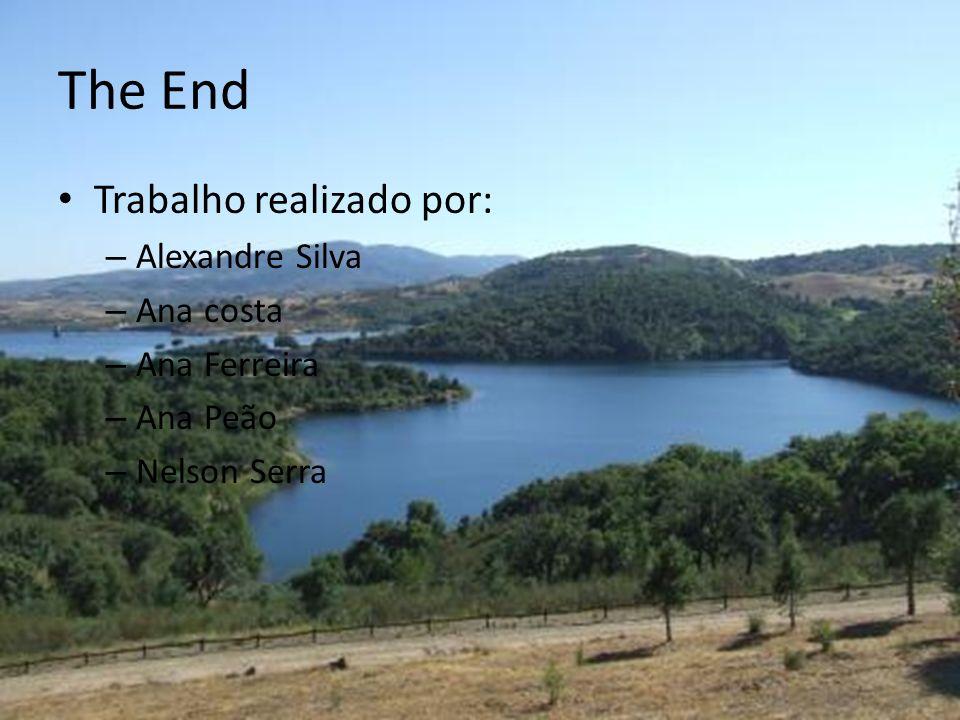 The End Trabalho realizado por: – Alexandre Silva – Ana costa – Ana Ferreira – Ana Peão – Nelson Serra