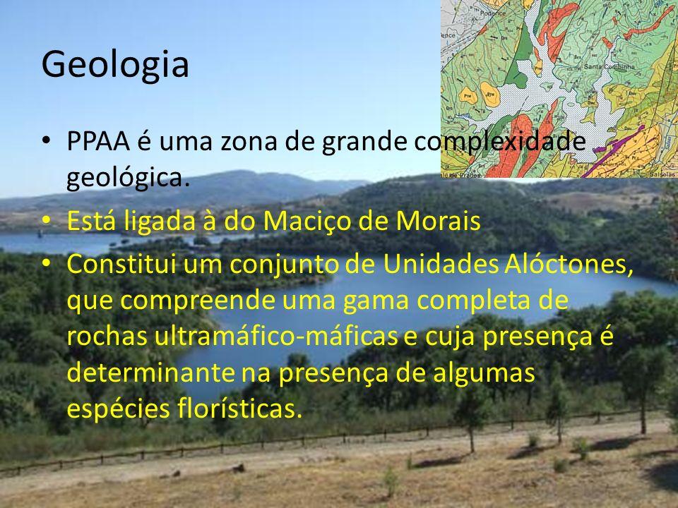 Geologia PPAA é uma zona de grande complexidade geológica. Está ligada à do Maciço de Morais Constitui um conjunto de Unidades Alóctones, que compreen