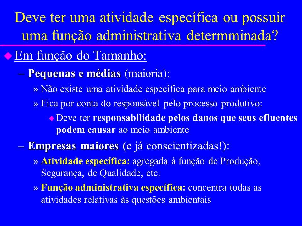 Deve ter uma atividade específica ou possuir uma função administrativa determminada? u Em função do ramo industrial: –Envolvimento intenso –Envolvimen