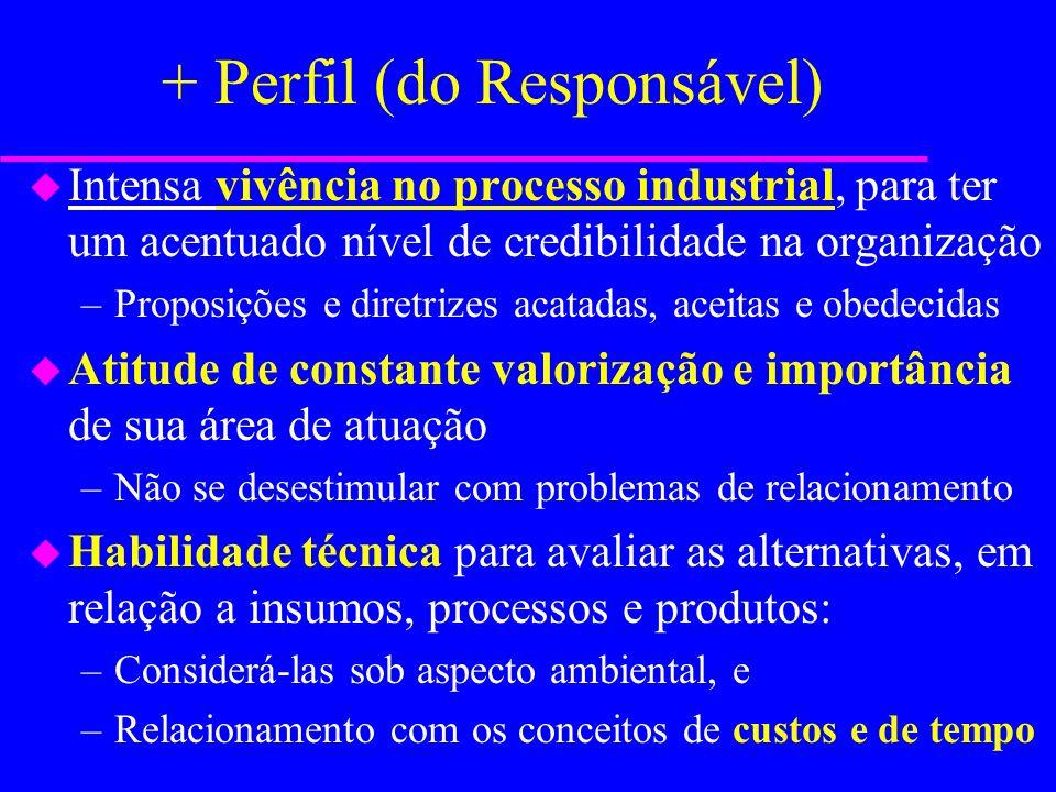 O Responsável: Perfil (papéis) u Representante Organizacional u Planejador u Organizador u Conhecedor de tecnologias u Assessor técnico u Administrado