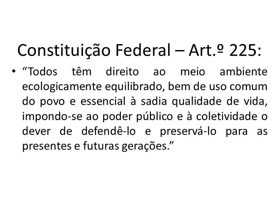 Constituição Federal – Art.º 225: Todos têm direito ao meio ambiente ecologicamente equilibrado, bem de uso comum do povo e essencial à sadia qualidad