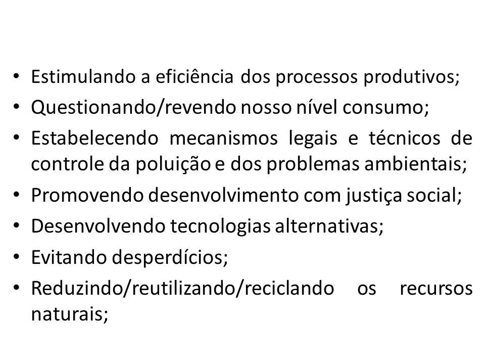 Estimulando a eficiência dos processos produtivos; Questionando/revendo nosso nível consumo; Estabelecendo mecanismos legais e técnicos de controle da poluição e dos problemas ambientais; Promovendo desenvolvimento com justiça social; Desenvolvendo tecnologias alternativas; Evitando desperdícios; Reduzindo/reutilizando/reciclando os recursos naturais;