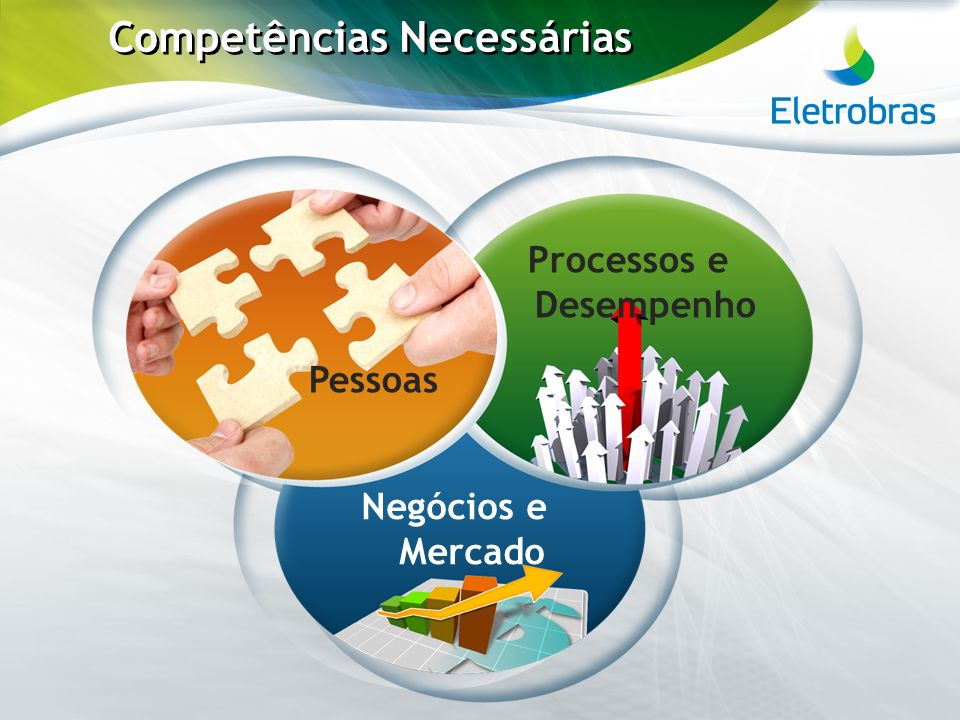 Competências Necessárias Pessoas Processos e Desempenho Negócios e Mercado