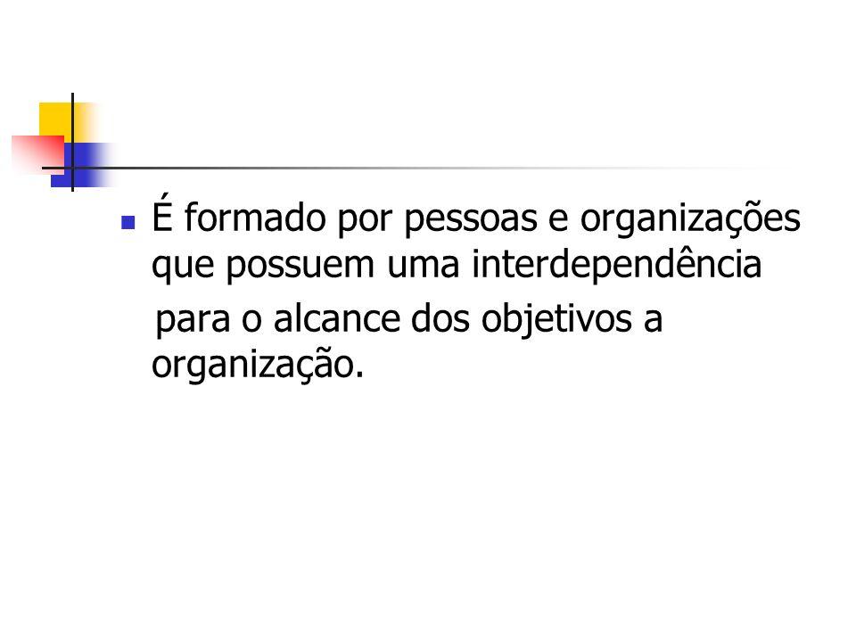 É formado por pessoas e organizações que possuem uma interdependência para o alcance dos objetivos a organização.