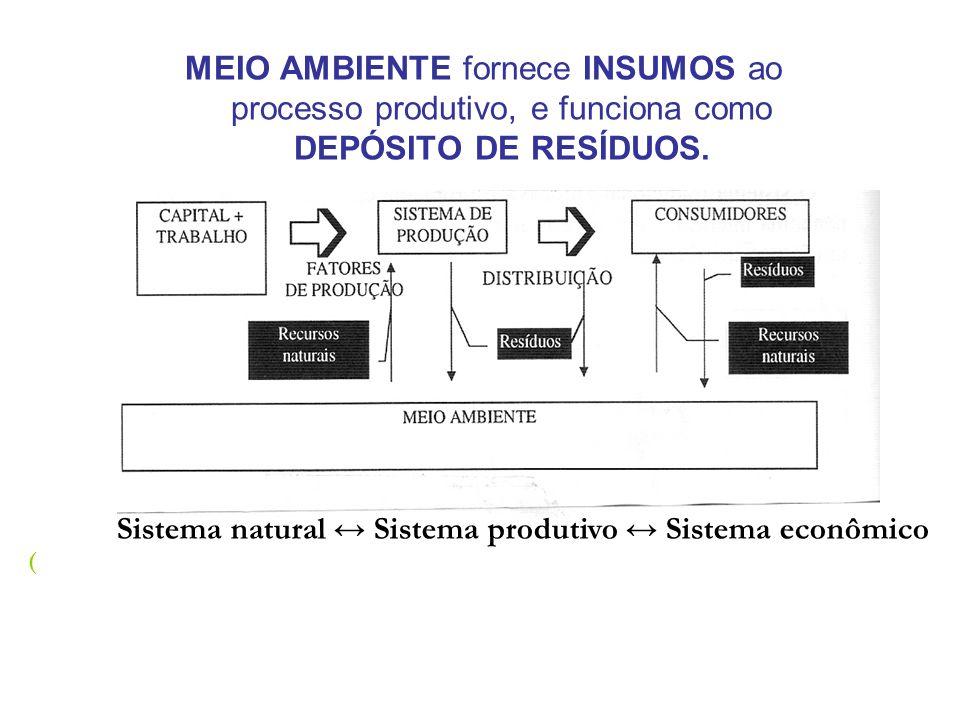 MEIO AMBIENTE fornece INSUMOS ao processo produtivo, e funciona como DEPÓSITO DE RESÍDUOS. Sistema natural Sistema produtivo Sistema econômico (