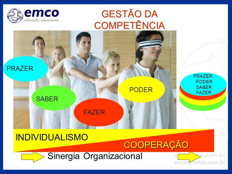 GESTÃO DA COMPETÊNCIA Sinergia Organizacional PODER PRAZER SABER FAZER PRAZER PODER SABER FAZER INDIVIDUALISMO COOPERAÇÃO