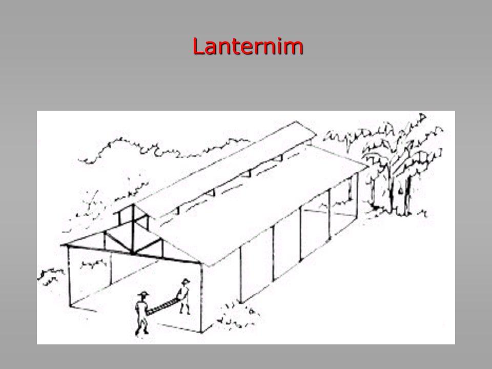 Lanternim