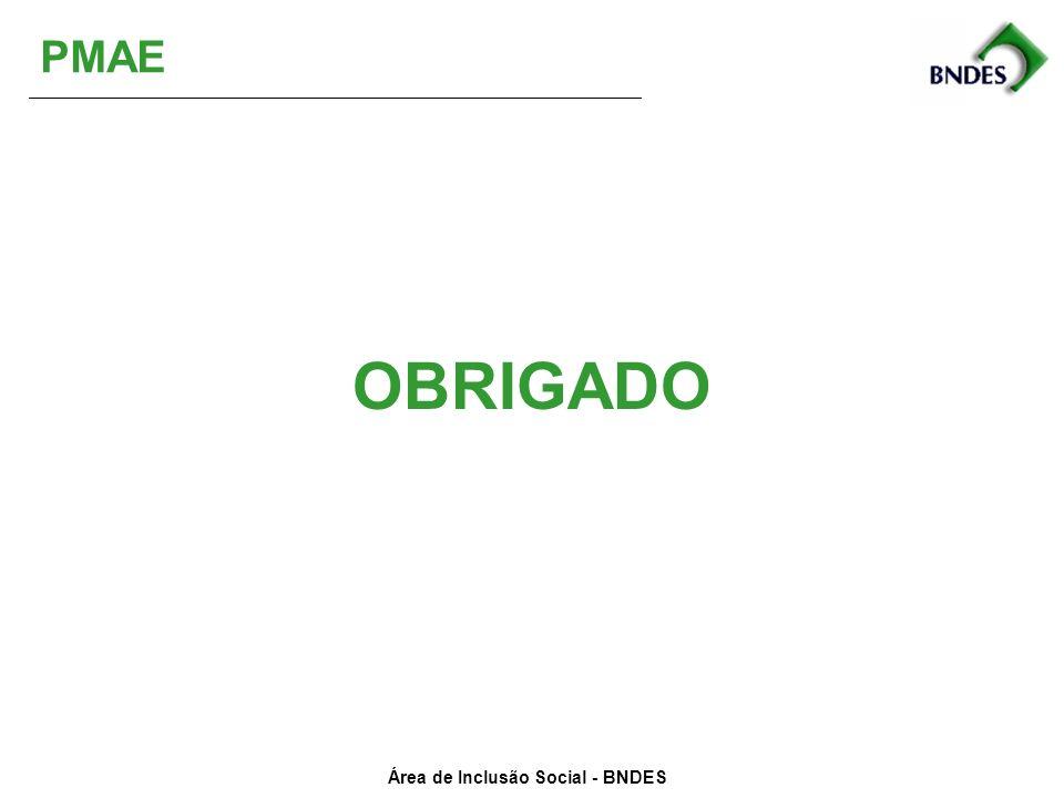 Área de Inclusão Social - BNDES OBRIGADO PMAE