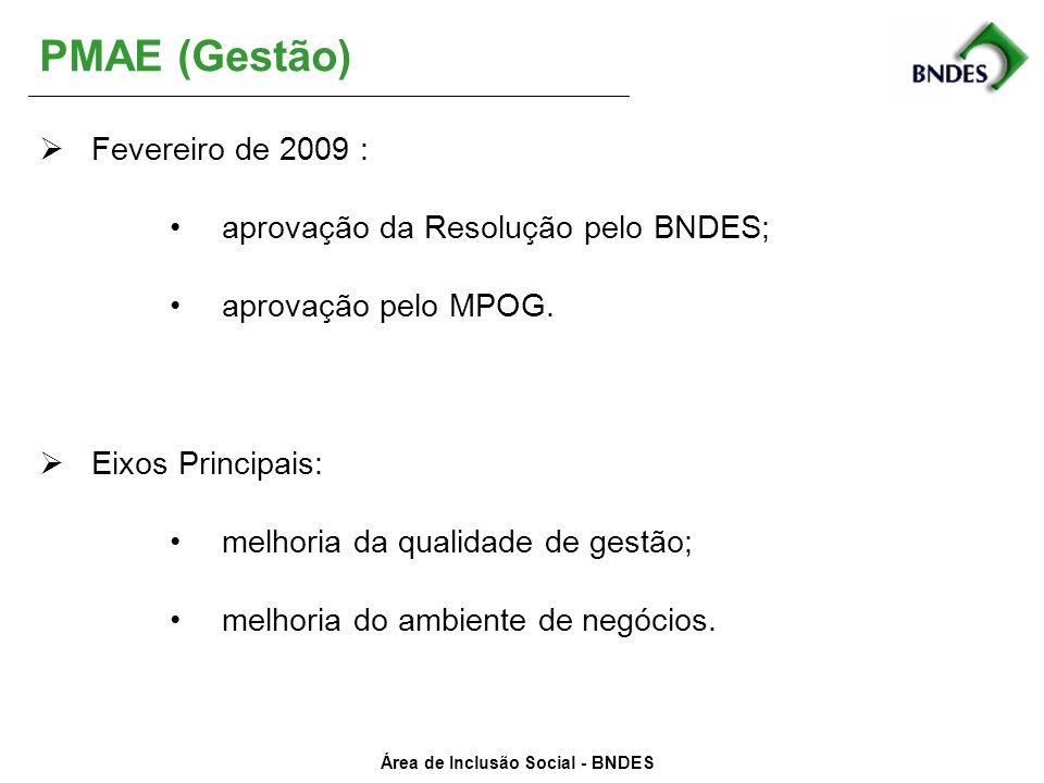 Área de Inclusão Social - BNDES PMAE (Gestão) Fevereiro de 2009 : aprovação da Resolução pelo BNDES; aprovação pelo MPOG. Eixos Principais: melhoria d