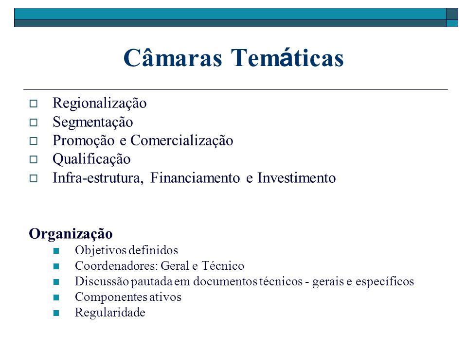 Câmaras Tem á ticas Regionalização Segmentação Promoção e Comercialização Qualificação Infra-estrutura, Financiamento e Investimento Organização Objetivos definidos Coordenadores: Geral e Técnico Discussão pautada em documentos técnicos - gerais e específicos Componentes ativos Regularidade