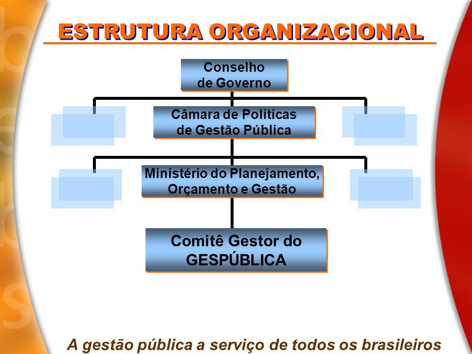 ESTRUTURA ORGANIZACIONAL Secretaria Executiva Ministério do Planejamento, Orçamento e Gestão Ministério do Planejamento, Orçamento e Gestão Avaliação da Gestão Avaliação da Gestão Conselho do PQGF SEGES Comitê Gestor do GESPÚBLICA Comitê Gestor do GESPÚBLICA A gestão pública a serviço de todos os brasileiros Comitês Gestores Regionais Comitês Gestores Regionais Gestão do Atendimento Gestão do Atendimento Desburo- cratização Desburo- cratização P&D em GP&D P&D em GP&D Órgãos e entidades públicos brasileiros Sociedade GESPÚBLICAGESPÚBLICA