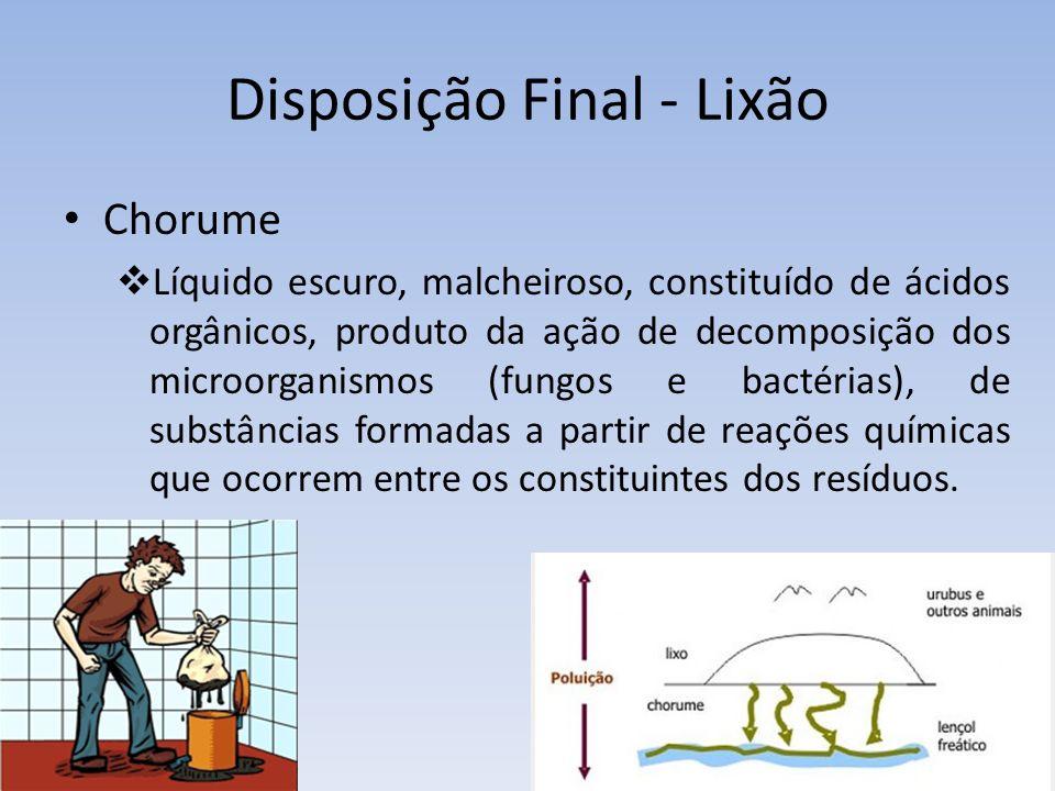 Disposição Final - Lixão Chorume Líquido escuro, malcheiroso, constituído de ácidos orgânicos, produto da ação de decomposição dos microorganismos (fungos e bactérias), de substâncias formadas a partir de reações químicas que ocorrem entre os constituintes dos resíduos.