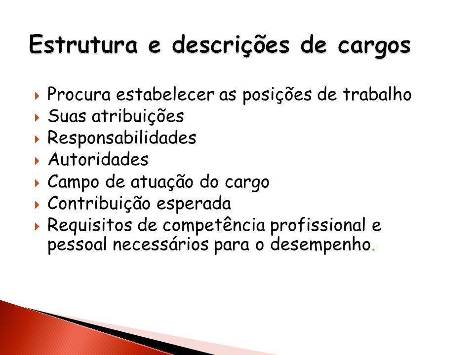 Procura estabelecer as posições de trabalho Suas atribuições Responsabilidades Autoridades Campo de atuação do cargo Contribuição esperada Requisitos