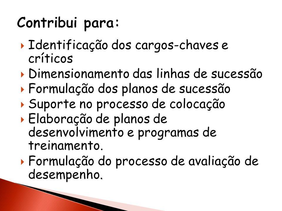 Identificação dos cargos-chaves e críticos Dimensionamento das linhas de sucessão Formulação dos planos de sucessão Suporte no processo de colocação E