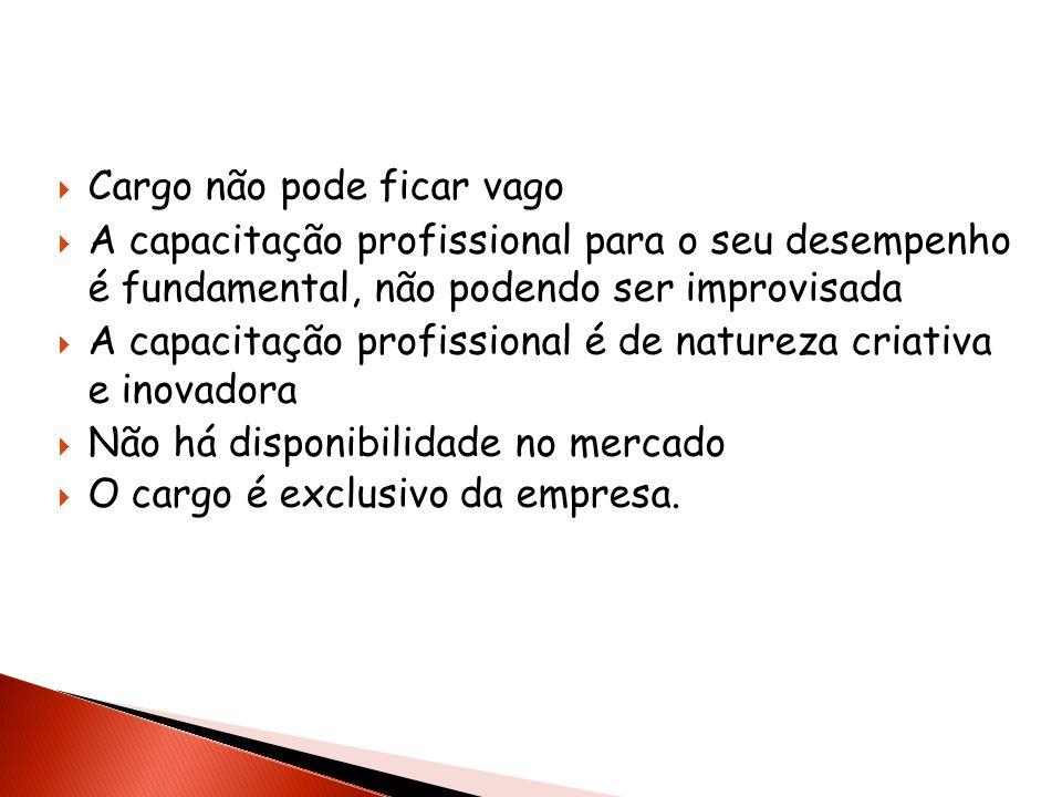 Cargo não pode ficar vago A capacitação profissional para o seu desempenho é fundamental, não podendo ser improvisada A capacitação profissional é de