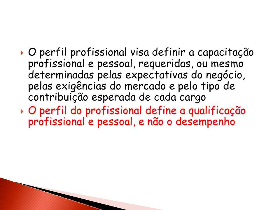 O perfil profissional visa definir a capacitação profissional e pessoal, requeridas, ou mesmo determinadas pelas expectativas do negócio, pelas exigên