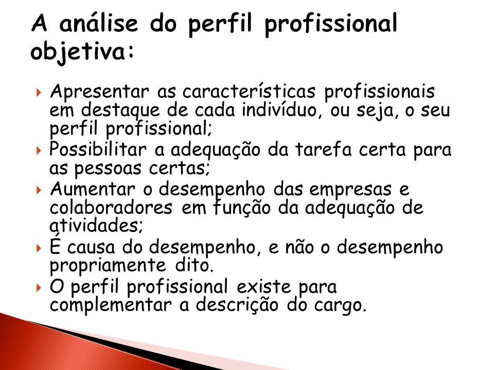 Apresentar as características profissionais em destaque de cada indivíduo, ou seja, o seu perfil profissional; Possibilitar a adequação da tarefa cert
