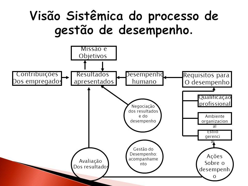 Missão e Objetivos Contribuições Dos empregados Resultados apresentados Desempenho humano Requisitos para O desempenho Qualificaçao profissional Ambie