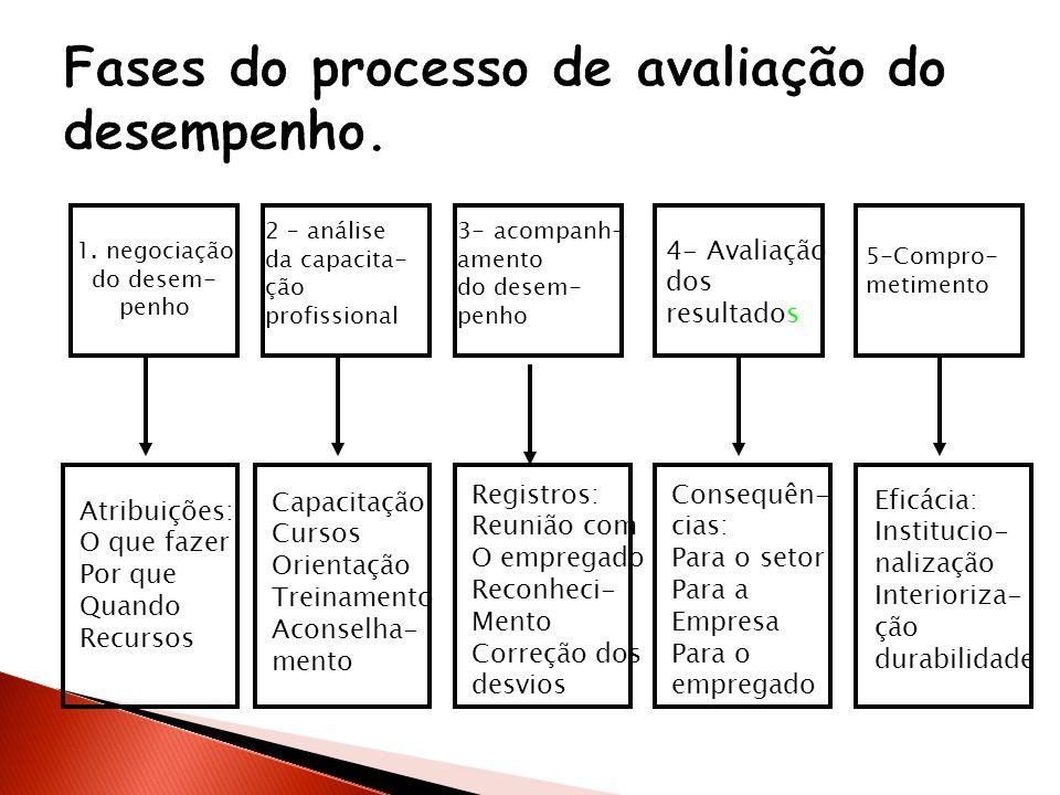 1. negociação do desem- penho 2 – análise da capacita- ção profissional 3- acompanh- amento do desem- penho 4- Avaliação dos resultados 5-Compro- meti