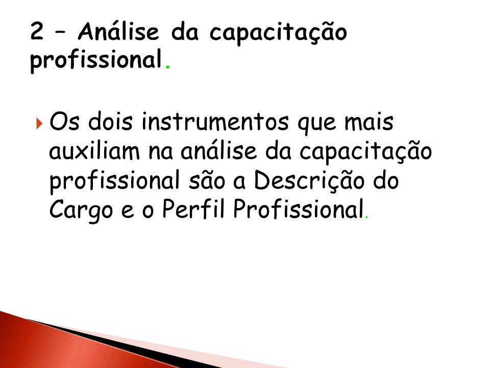 Os dois instrumentos que mais auxiliam na análise da capacitação profissional são a Descrição do Cargo e o Perfil Profissional.
