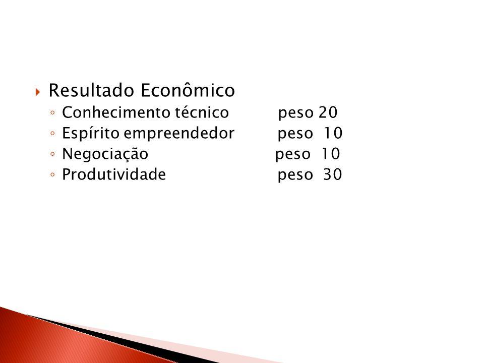 Resultado Econômico Conhecimento técnico peso 20 Espírito empreendedor peso 10 Negociação peso 10 Produtividade peso 30