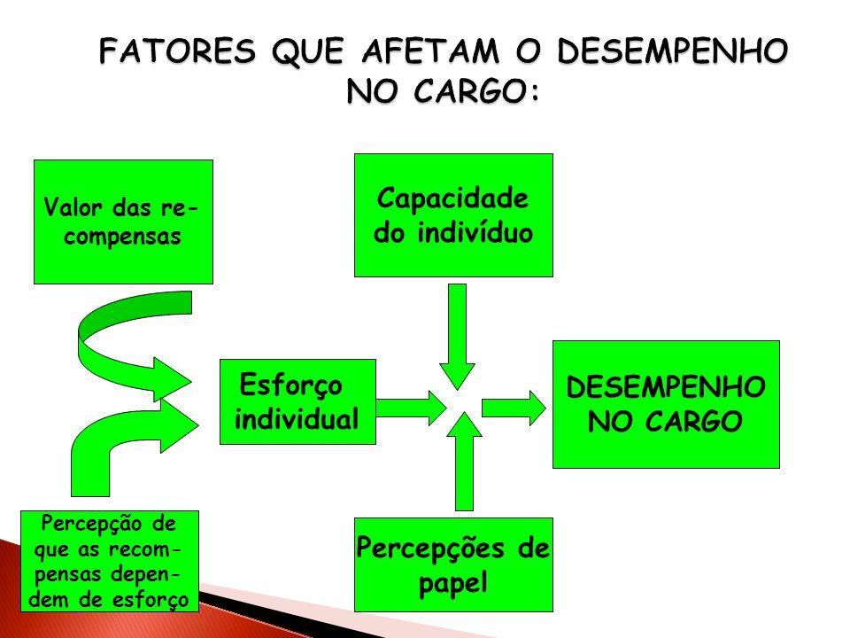 Esforço individual Percepções de papel Capacidade do indivíduo DESEMPENHO NO CARGO Valor das re- compensas Percepção de que as recom- pensas depen- de