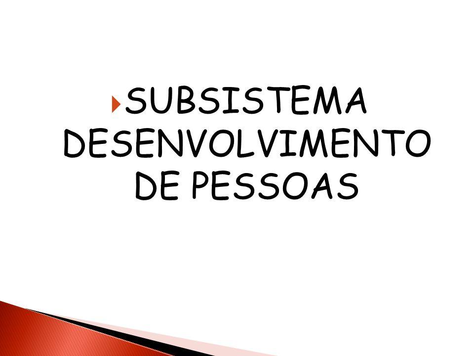 SUBSISTEMA DESENVOLVIMENTO DE PESSOAS