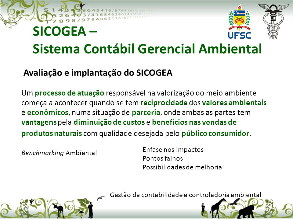 SICOGEA – Sistema Contábil Gerencial Ambiental Gestão da contabilidade e controladoria ambiental Avaliação e implantação do SICOGEA Um processo de atu
