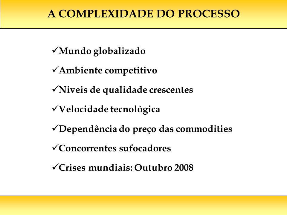 A COMPLEXIDADE DO PROCESSO Mundo globalizado Ambiente competitivo Niveis de qualidade crescentes Velocidade tecnológica Dependência do preço das commodities Concorrentes sufocadores Crises mundiais: Outubro 2008