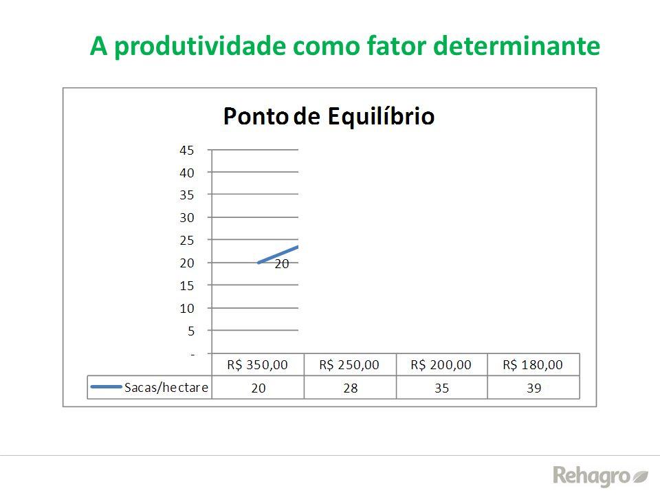 A produtividade como fator determinante