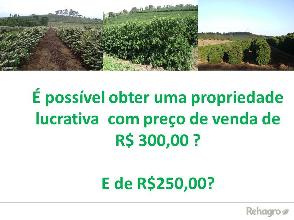 É possível obter uma propriedade lucrativa com preço de venda de R$ 300,00 ? E de R$250,00?