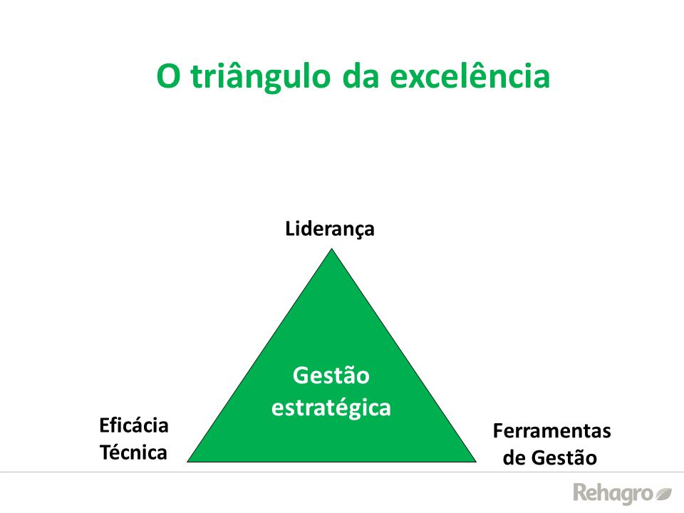 Gestão estratégica Liderança Eficácia Técnica Ferramentas de Gestão O triângulo da excelência