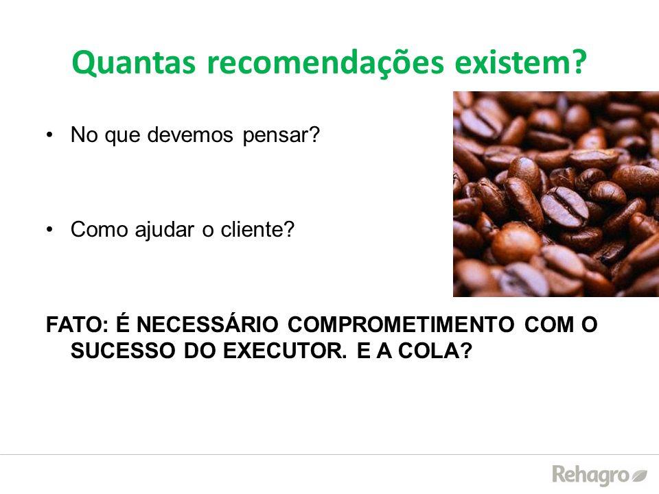 Quantas recomendações existem? No que devemos pensar? Como ajudar o cliente? FATO: É NECESSÁRIO COMPROMETIMENTO COM O SUCESSO DO EXECUTOR. E A COLA?