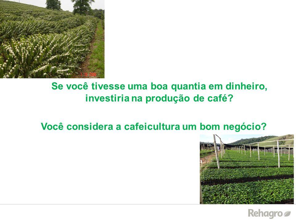 Se você tivesse uma boa quantia em dinheiro, investiria na produção de café? Você considera a cafeicultura um bom negócio?