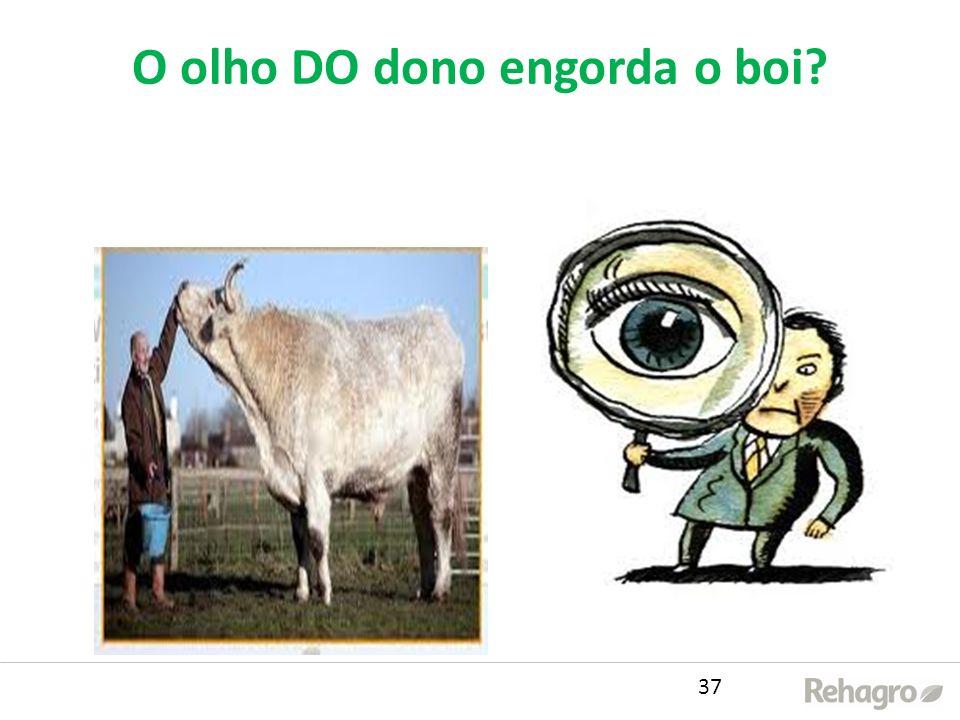 O olho DO dono engorda o boi? 37
