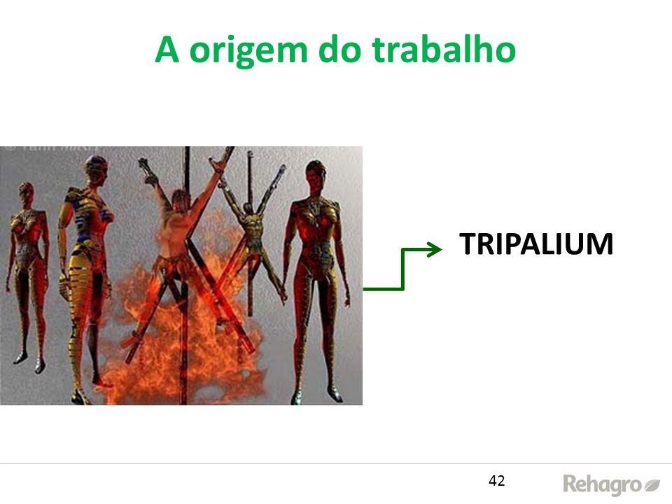 A origem do trabalho TRIPALIUM 42