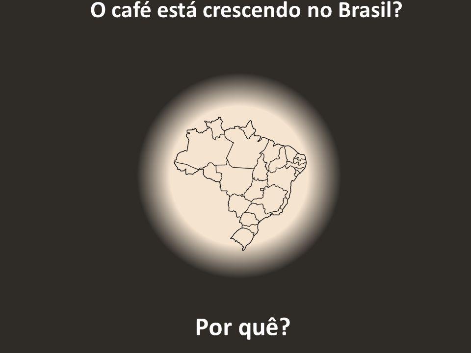 O café está crescendo no Brasil? Por quê?