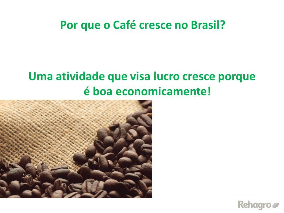 Por que o Café cresce no Brasil? Uma atividade que visa lucro cresce porque é boa economicamente!