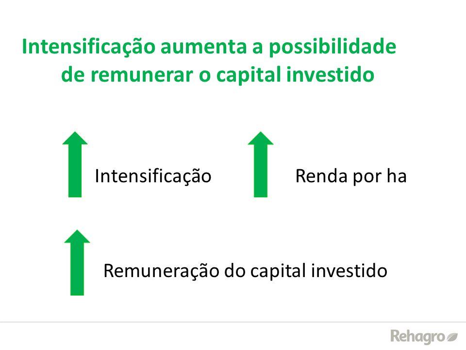 Intensificação Renda por ha Remuneração do capital investido Intensificação aumenta a possibilidade de remunerar o capital investido