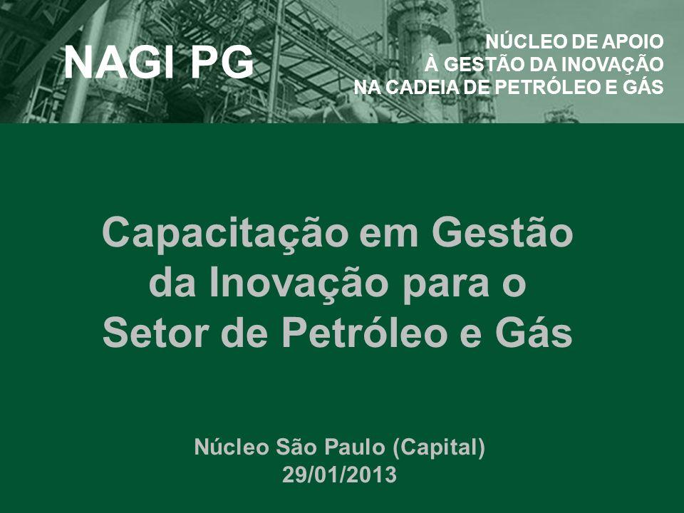 Capacitação em Gestão da Inovação para o Setor de Petróleo e Gás Núcleo São Paulo (Capital) 29/01/2013 NAGI PG NÚCLEO DE APOIO À GESTÃO DA INOVAÇÃO NA CADEIA DE PETRÓLEO E GÁS