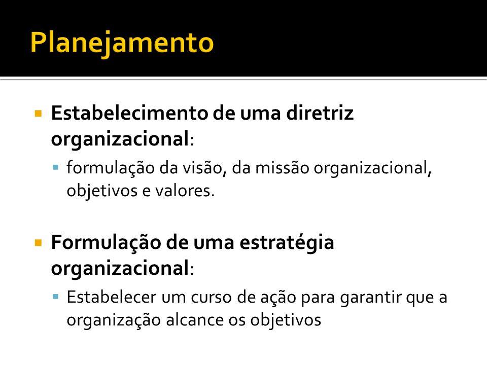Estabelecimento de uma diretriz organizacional: formulação da visão, da missão organizacional, objetivos e valores.