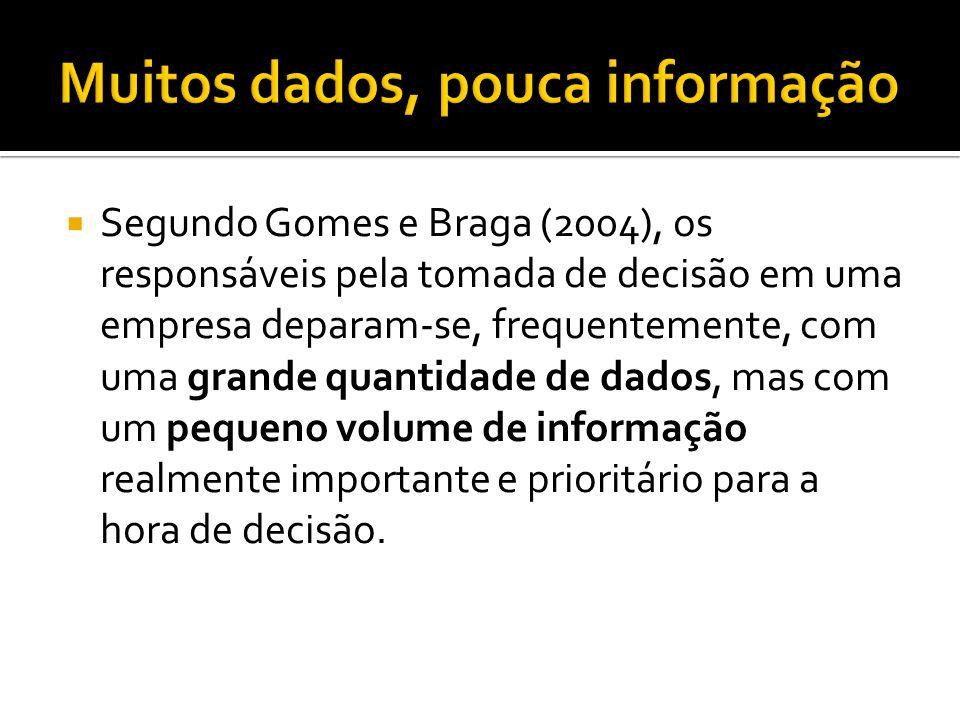 Segundo Gomes e Braga (2004), os responsáveis pela tomada de decisão em uma empresa deparam-se, frequentemente, com uma grande quantidade de dados, mas com um pequeno volume de informação realmente importante e prioritário para a hora de decisão.