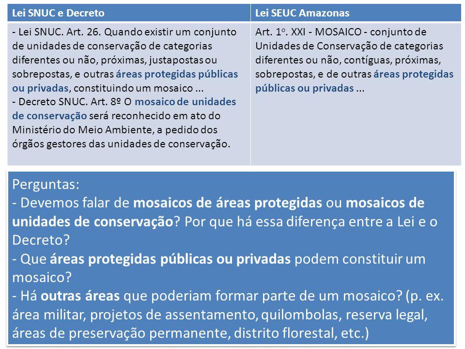 Perguntas: - Devemos falar de mosaicos de áreas protegidas ou mosaicos de unidades de conservação? Por que há essa diferença entre a Lei e o Decreto?