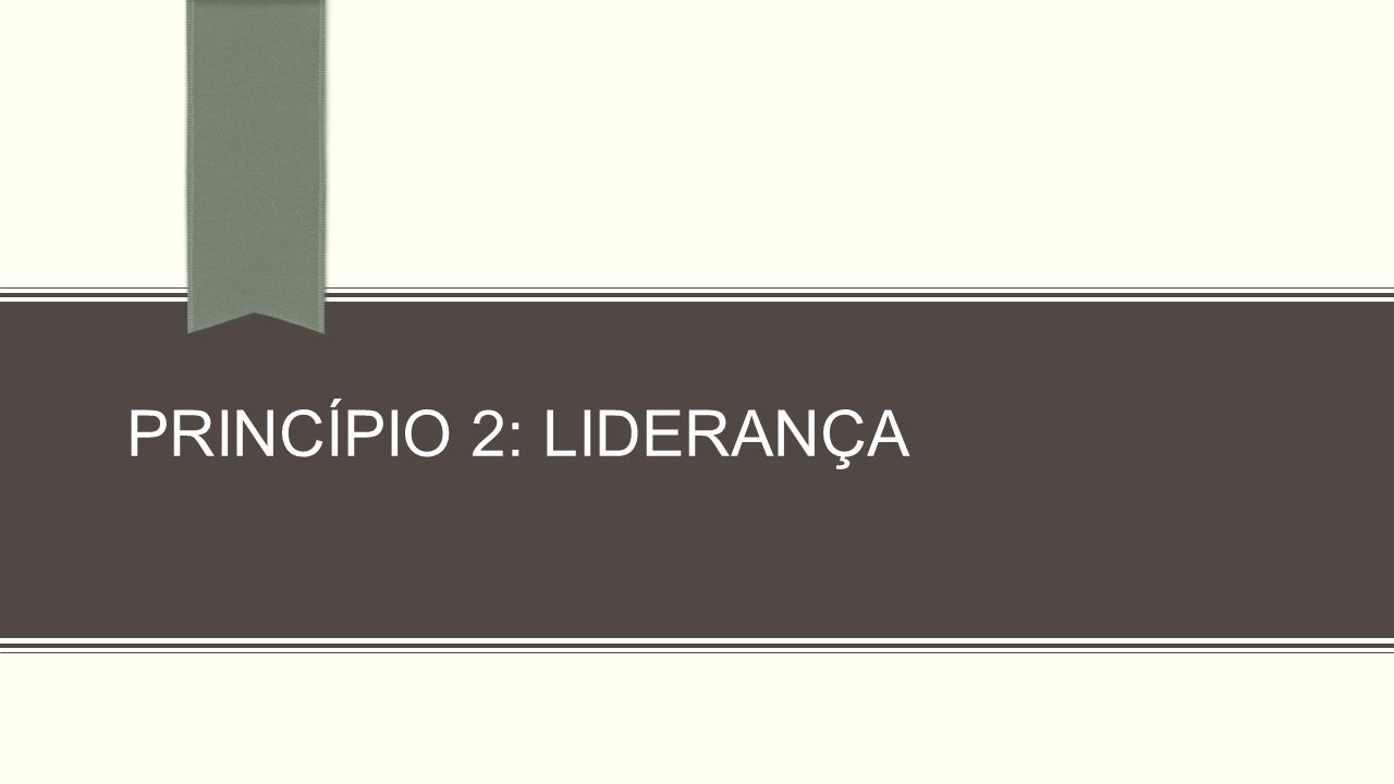 PRINCÍPIO 2: LIDERANÇA