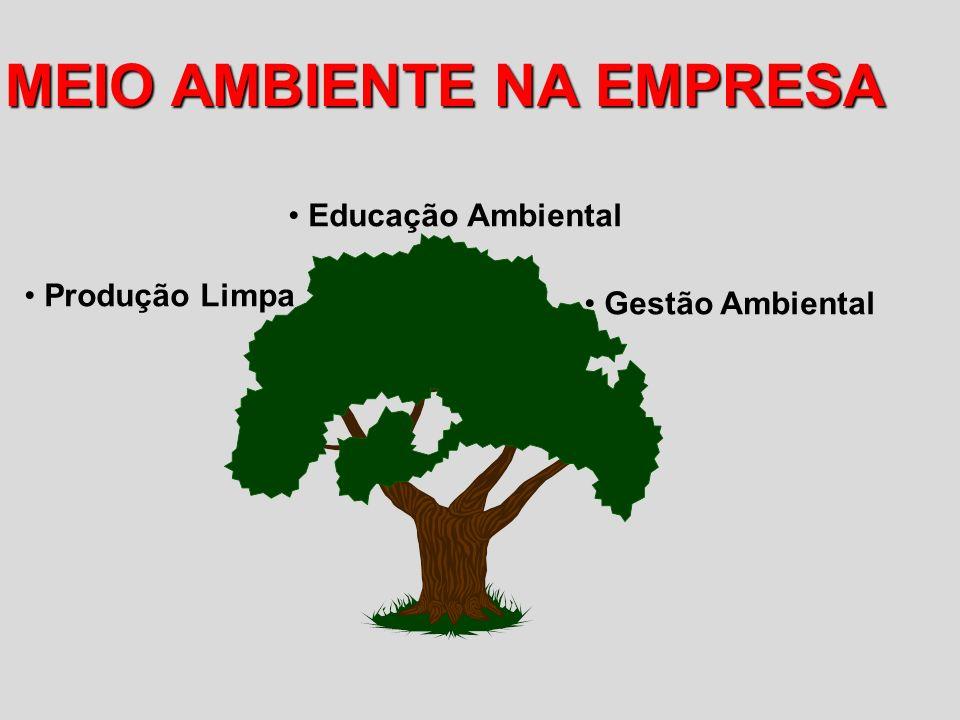 MEIO AMBIENTE NA EMPRESA Gestão Ambiental Produção Limpa Educação Ambiental