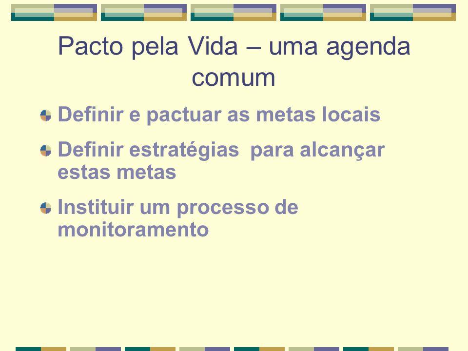 Pacto pela Vida – uma agenda comum Definir e pactuar as metas locais Definir estratégias para alcançar estas metas Instituir um processo de monitoramento